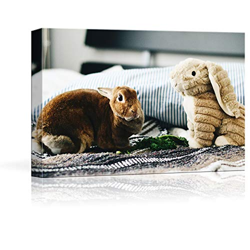 NWT Custom Canvas Prints with Your Photos for Pet/Animal, Personalized Canvas Pictures for Wall to Print Framed 16x24 inches