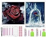 APERIL 2pcs Diamond Painting Bilder Set, 5D Diamant Painting Klein Rose Flower Strass Stickerei Kreuzstich Malerei Arts Craft für Wand Aufkleber Home Decor mit 26 Kompletten Werkzeugsätzen