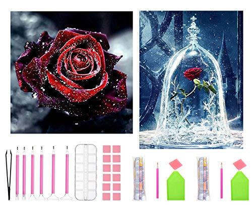 APERIL DIY 5D Diamond Painting Kit Completo, 2 Pezzi Diamond Art Rosa Pittura Diamante Punto Croce Bambini Painting by Numbers Adulti Strass Adesivi per Decorazioni Casa e Pareti