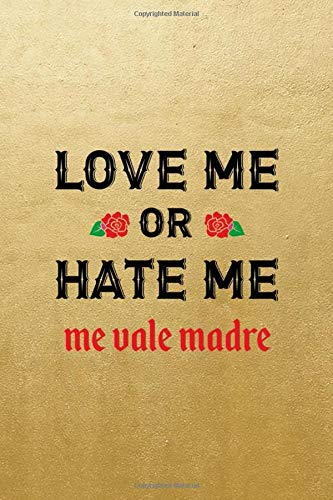 Love Me Or Hate Me Me Vale Madre: Notebook Journal Composition Blank Lined Diary Notepad 120 Pages Paperback Blue Bikini