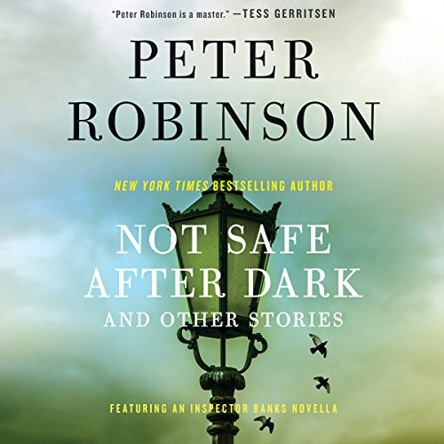 Not Safe After Dark audiobook cover art