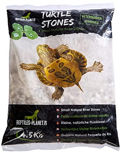 Reptiles Planet pequeño Piedras de Río Colores Naturales para Tortuga acuáticos Turtle Stones 4,5kg