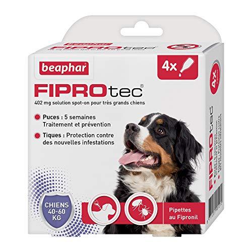 Beaphar – FIPROTEC 402 mg – Solution spot-on pour très grands chiens (40-60 kg) – À base de Fipronil – Élimine les puces – Protège contre les infestations par tiques et puces – 4 pipettes de 4,02 ml