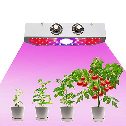 GZZJ COB Lampada da Coltivazione, 1000W LED Pianta la Lampada, Spettro Completo Chip crescono la Luce per Le Piante d'appartamento Veg e Fiore