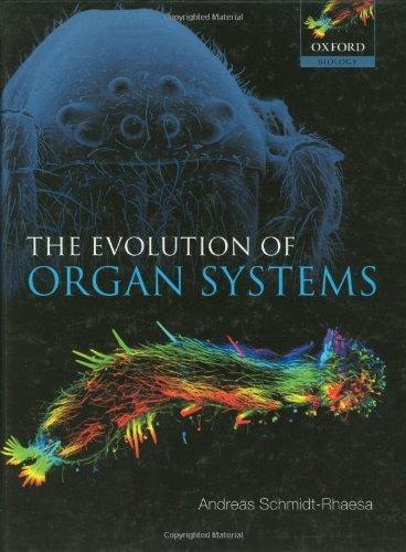 The Evolution of Organ Systems (English Edition)