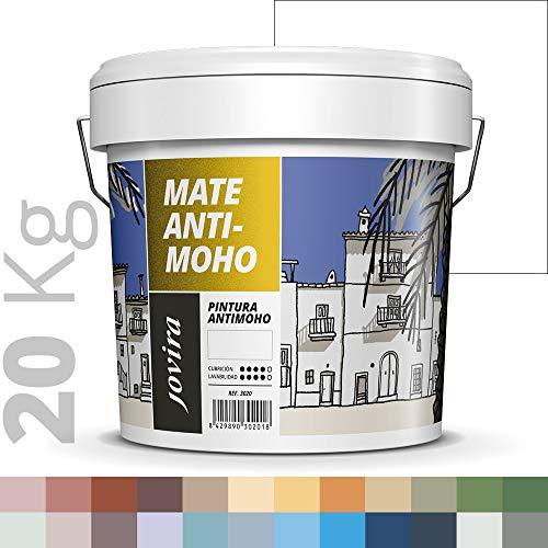PINTURA ANTIMOHO, evita el moho, resistente a la aparición de moho en paredes, aspecto mate. (20 KG, BLANCO)