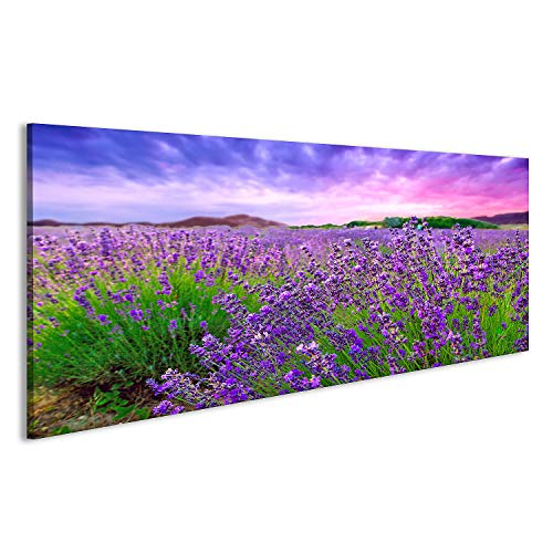 bilderfelix® Acrylglasbild Lavendel Feld Büsche Provence Glasbild Wandbild auf Glas