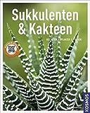 Sukkulenten und Kakteen (Mein Garten): Gestalten - Pflanzen - Pflegen