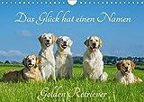 Das Glück hat einen Namen - Golden Retriever (Wandkalender 2020 DIN A4 quer)