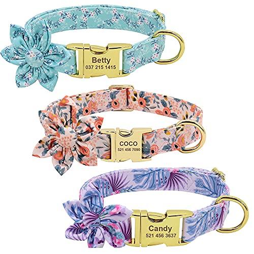 Collares para Perros Personalizados Collar Floral con Hebilla Dorada Collar para Mascotas Grabado con Cualquier Nombre, número de teléfono Collar Ajustable para Perros con Flor