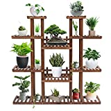 Tooca Plant Stand Wood Indoor, 9-Tier, 47-inch Height, Stylish Plant Shelf Steady Vertical Outdoor, Tiered Plant Ladder, Display Storage Rack, Carbonized, with 3 Gardening Tools