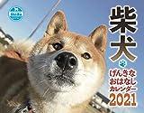 2021カレンダー 柴犬げんきな おはなしカレンダー ([カレンダー])
