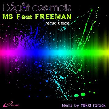 Dégât des mots (feat. Freeman) [Remix officiel]