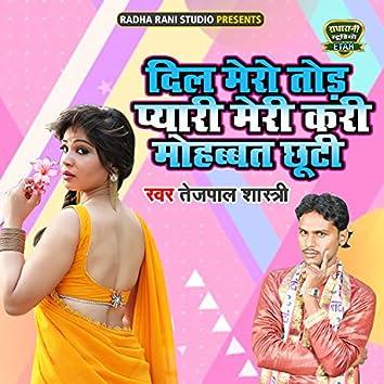 Dil Mero Tod Pyari Meri Kari Mohabbat Chooti (Dehati Song)