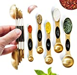Magnetic Measuring Spoons Set - Stainless Steel Measuring Spoons - Magnetic Measuring Spoon Set, Gold Measuring Spoons Magnetic, Cute Measuring Spoons for Cooking & Baking