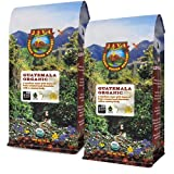 Java Planet, Organic Coffee Beans, Guatemalan Single Origin, Fair Trade, Gourmet Low Acid Medium Roast of Arabica Whole Bean Coffee, Certified Organic, Bird Friendly Certified, 2 1 LB Bag