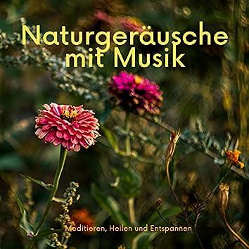 Naturgeräusche mit Musik - Meditieren, Heilen und Entspannen