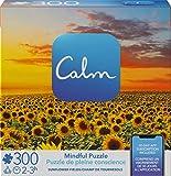 Spin Master Games 300-Piece Calm...