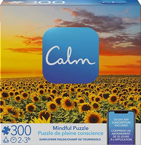 Spin Master Games 6061076 CGI APZ 300pc Calm 8x8 Pzl 1 GBL 300 Teile Ruhiges Puzzle für Entspannung, Stressabbau und Stimmungserhöhung, für Erwachsene und Kinder ab 8 Jahren, Sonnenblumenfelder, grau
