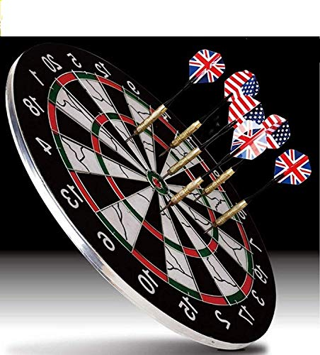 Sky Tech® Heavy Quality Metal Wiring Steel Tip Double Faced Flock Printing Thickening Family Game Dart Board with 6 Needle, 18 Inch