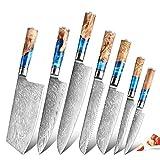 XITUO Kitchen Knife Set 7 Piece,Damascus Steel-VG10 Blue Resin...