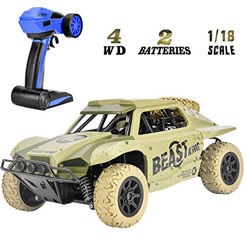 Rainbrace Off Road RC Racing Cars Toys for 6-15 Years Old Boys Kids,...