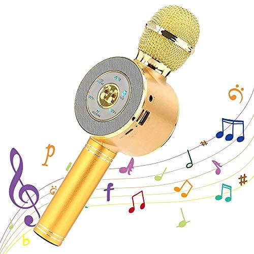 SJLHP El Micrófono De Karaoke, Altavoz Portátil De Mano