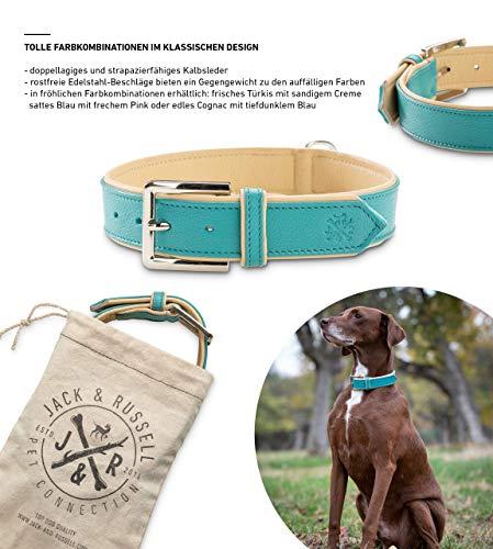 Jack & Russell Premium Leder Hunde Halsband Lilly - Lederhalsband Zwei Farben/Kalbleder vernäht - Hundehalsband Echtleder und Edelstahl Lilly (XS, Türkis/Beige)