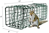 Parker 8 Live Animal Trap (17' X 6' X 6') Catch & Release Rodent Cage - Highly Efficient Professional Humane Solution for Rabbit, Squirrel, Mole, Gopher, Skunk - Steel