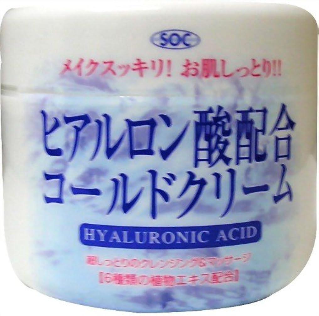 アカウントクール見捨てる澁谷油脂 ヒアルロン酸コールドクリーム 270g