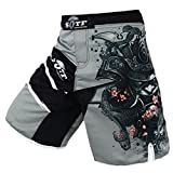 SOTF Men's Gray Sports Pants Muay Thai Boxing Shorts MMA Shorts, Gry and Multicolor, XX-Large