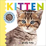 Kitten and Friends Touch and Feel (Baby Touch and Feel)