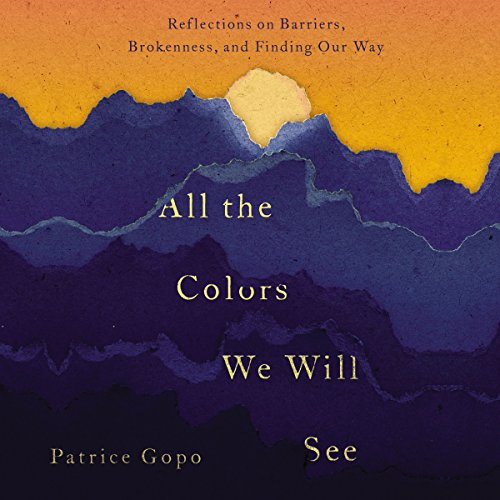 All the Colors We Will See audiobook cover art