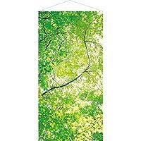 森・自然・木々・木漏れ日タペストリー | 新緑若葉タペストリー(防炎加工)