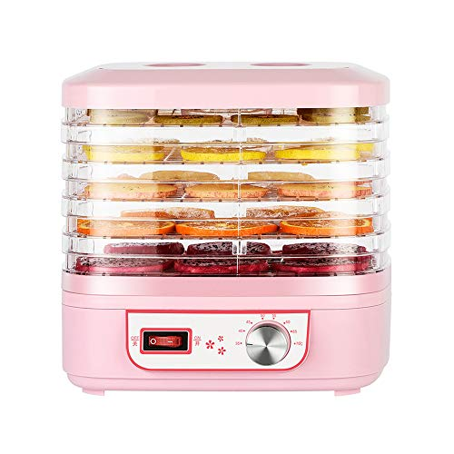 Find Bargain Food Dehydrator Machine Small Household Fruit Dryer Quiet And Low Energy Consumption La...