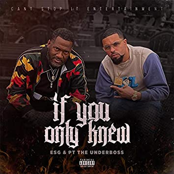 If You Only Knew (feat. PT The UnderBoss)