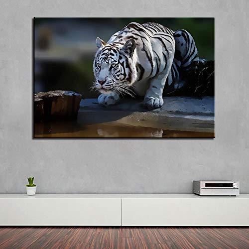 ART-HDeck Cuadro Salon Moderno Tigre Impresión en Lienzo 90x60cm Pint