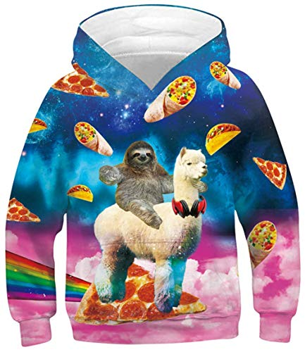 GIBIEE Boys Girls Novetly Hoodies 3D Print Unisex Pullover Sweatshirts with Pocket for 6-16 Years Alpaca Sloth 6-8 Years