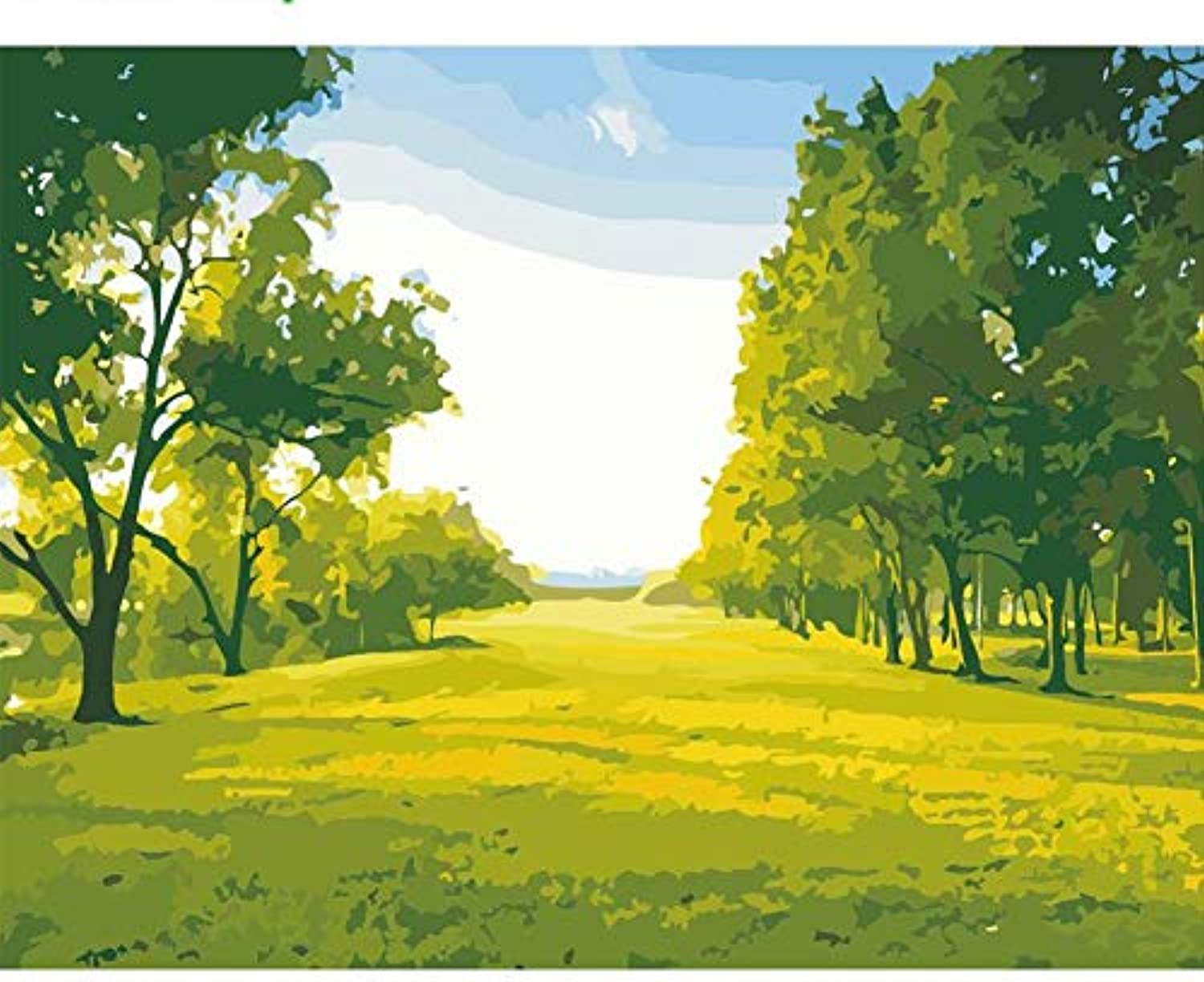 CAYYOU DIY Draw pictures by numbers on canvas spring forest view paintings for living room home decorations wall art acrylic paints, Framed, 50x60cm