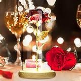 Rosa eterna bajo campana, rosa roja, romántica con cúpula de cristal, regalo para San Valentín, regalo de cumpleaños, regalo de boda, decoración, etc.