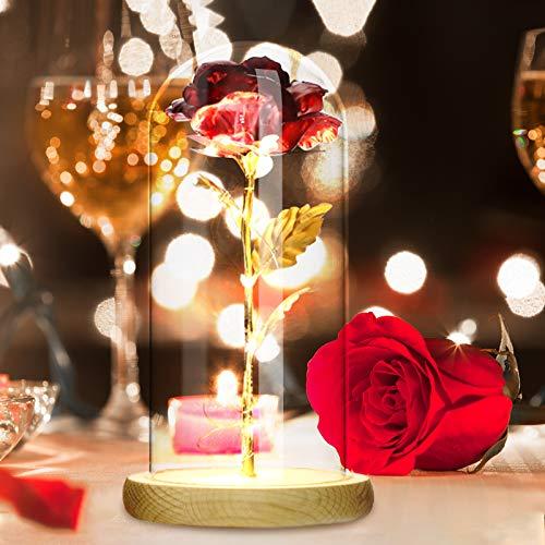 Rosa eterna bajo campana, rosa roja, romántica con cúpula de cristal, regalo...
