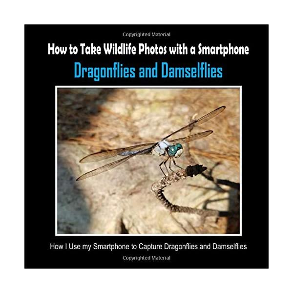 Dragonflies and Damselflies: How I Use My Smartphone to Capture Dragonflies and Damselflies (How to Take Wildlife Photos with a Smartphone)