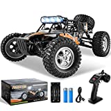 BEZGAR 3 Hobbyist Grade 1:12 Scale RC Trucks, 4WD High Speed 42 Km/h Electric Toy Off Road Sand Rall Buggy RC Truck RC Monster Car with Rechargeable Batteries for Boys and Adults