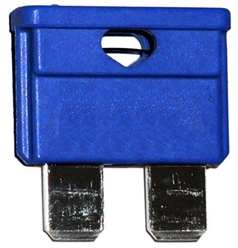 AERZETIX: 10 fusibles - 15A -Bleu - Midi - 19mm - 6V 12V 24V 36V - pour Auto Moto Voiture Camion poids lourds - C10350