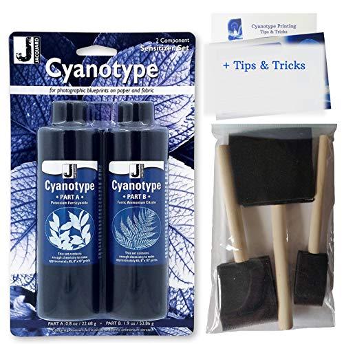 Cyanotype Kit - Kit per cianotipia, viene fornito con 3 pennelli in schiuma & suggerimenti, per cianotipia, crea la tua carta sensibile alla luce, per stampe attraverso la luce solare