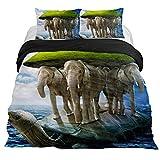 Eslifey Juego de Funda de edredón de 3 Piezas con diseño de Tortuga y Elefantes de 59 x 79 Pulgadas para Dormitorio, King 102 x 90\19 x 29 in