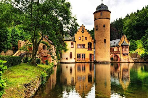 1000 Piece Jigsaw Puzzles For Adults Mespelbrunn Castle Educational Toy For Kids and Adults Wooden Assembling