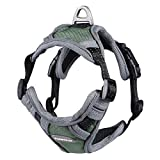 POPETPOP Dog Harness Reflective Adjustable Outdoor Pet Vest Harness Easy Control for Small