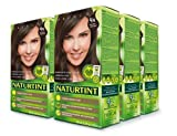 Naturtint Permanent Hair Color 4N Natural Chestnut (Pack of 6), Ammonia Free, Vegan, Cruelty Free, up to 100% Gray Coverage, Long Lasting Results