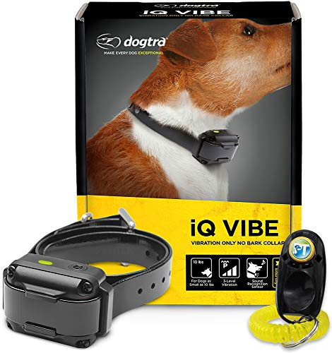 Dogtra IQ Vibe Vibration No Bark Collar - Rechargeable, High-Performance Pager, Waterproof, for Small to Medium Dogs, Includes PetsTEK Training Clicker